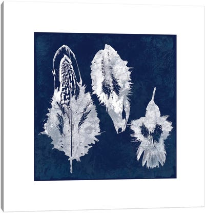 Cyanotype Feather I Canvas Art Print
