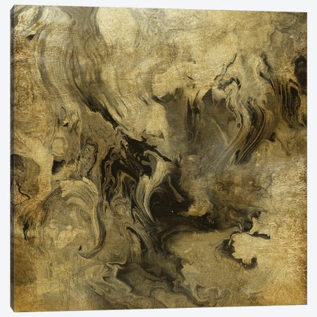 Golden Dream Canvas Print #CRO1016} by Carol Robinson Canvas Art