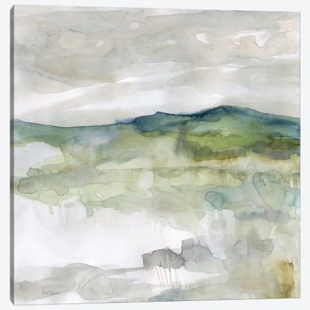 Hillside Study Canvas Print #CRO1018} by Carol Robinson Art Print
