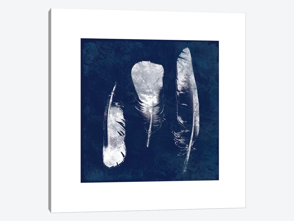 Cyanotype Feather II by Carol Robinson 1-piece Canvas Art Print