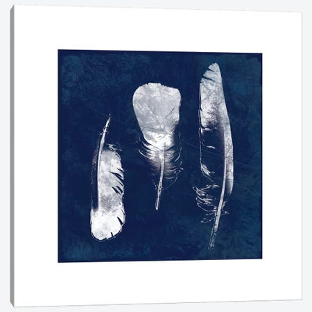 Cyanotype Feather II Canvas Print #CRO101} by Carol Robinson Canvas Art