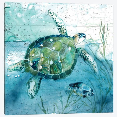 Island Swim I Canvas Print #CRO1022} by Carol Robinson Canvas Artwork