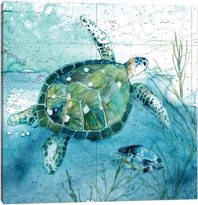 Island Swim I Canvas Art Print