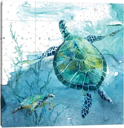 Island Swim II Canvas Art Print
