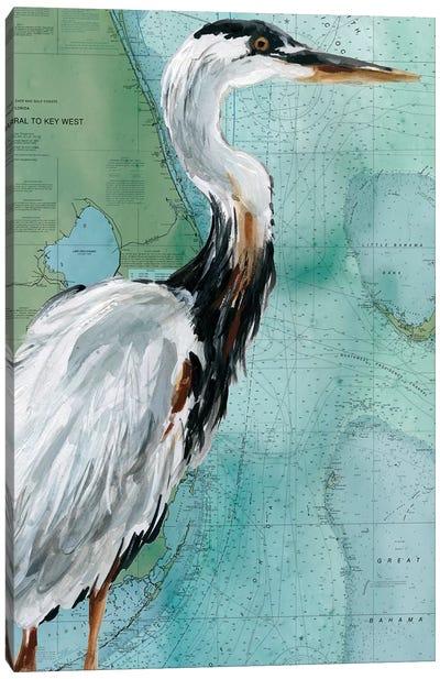 Key West Crane Canvas Art Print