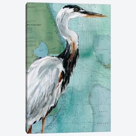 Key West Crane Canvas Print #CRO1024} by Carol Robinson Art Print
