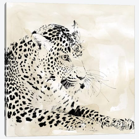 Leopard Spot I Canvas Print #CRO1026} by Carol Robinson Art Print