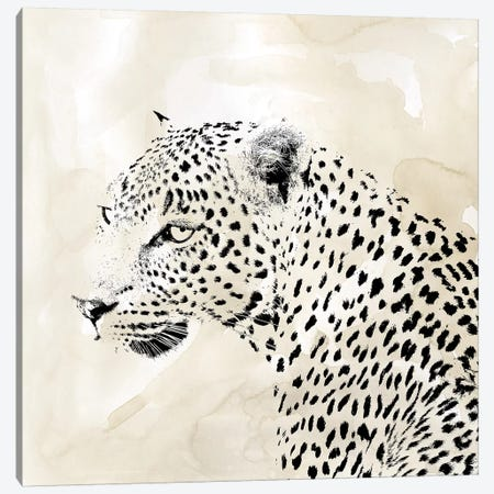 Leopard Spot II Canvas Print #CRO1027} by Carol Robinson Canvas Art Print