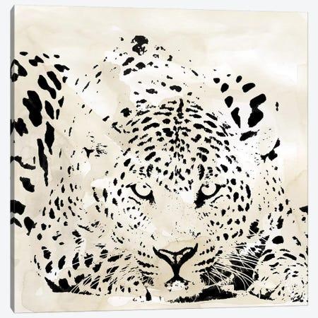 Leopard Spot III Canvas Print #CRO1028} by Carol Robinson Canvas Wall Art