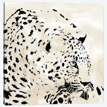 Leopard Spot IV Canvas Print #CRO1029} by Carol Robinson Canvas Wall Art
