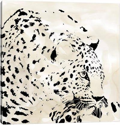 Leopard Spot IV Canvas Art Print