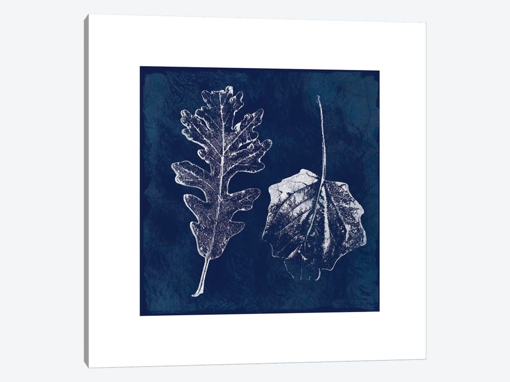 Cyanotype Oak Leaves by Carol Robinson 1-piece Canvas Art
