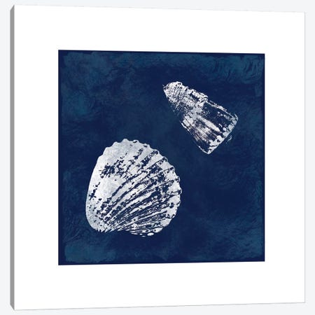 Cyanotype Shells I Canvas Print #CRO103} by Carol Robinson Canvas Artwork