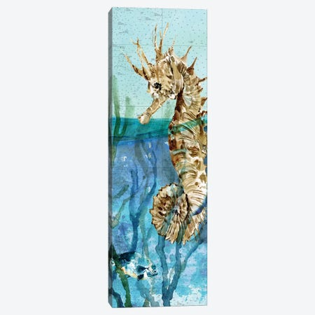 Pacific Seahorse Canvas Print #CRO1042} by Carol Robinson Canvas Wall Art