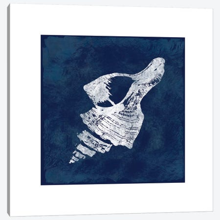 Cyanotype Shells II Canvas Print #CRO104} by Carol Robinson Canvas Art Print