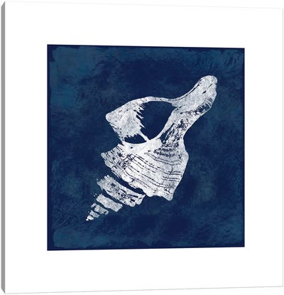 Cyanotype Shells II Canvas Art Print