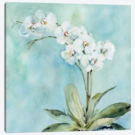 Sunlit Orchid Canvas Print #CRO1058} by Carol Robinson Art Print