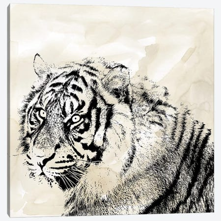 Tiger Stripes II Canvas Print #CRO1064} by Carol Robinson Canvas Print