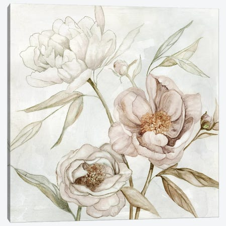 Washed Botanical I Canvas Print #CRO1067} by Carol Robinson Canvas Art Print