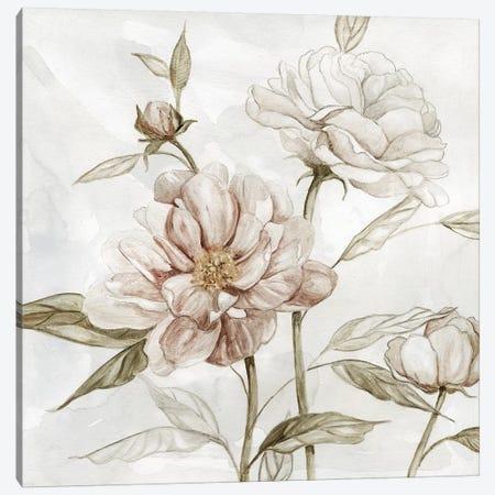 Washed Botanical II Canvas Print #CRO1068} by Carol Robinson Canvas Art
