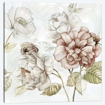 Washed Botanical III Canvas Print #CRO1069} by Carol Robinson Canvas Art