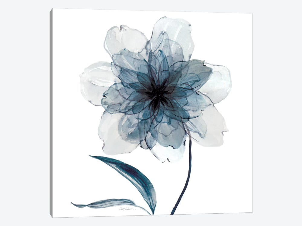 Indigo Bloom II by Carol Robinson 1-piece Canvas Wall Art