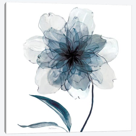 Indigo Bloom II Canvas Print #CRO106} by Carol Robinson Canvas Art Print