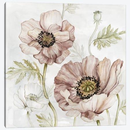 Washed Botanical IV Canvas Print #CRO1070} by Carol Robinson Canvas Print