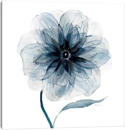 Indigo Bloom III Canvas Art Print