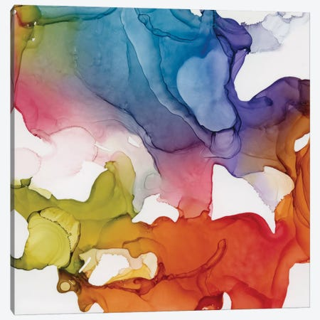 Spectrum Colors II Canvas Print #CRO1093} by Carol Robinson Canvas Print