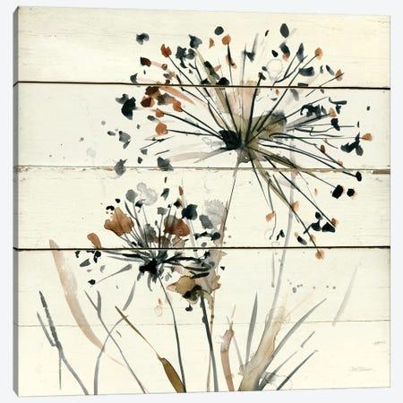 Nature's Lace I Canvas Print #CRO109} by Carol Robinson Canvas Wall Art