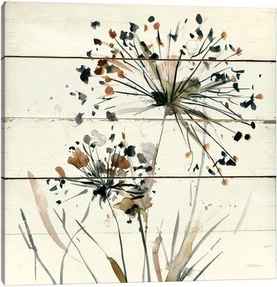 Nature's Lace I Canvas Art Print