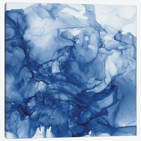 Beyond The Deep I Canvas Print #CRO1101} by Carol Robinson Canvas Print