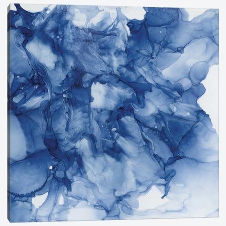 Beyond The Deep II Canvas Print #CRO1102} by Carol Robinson Canvas Art Print
