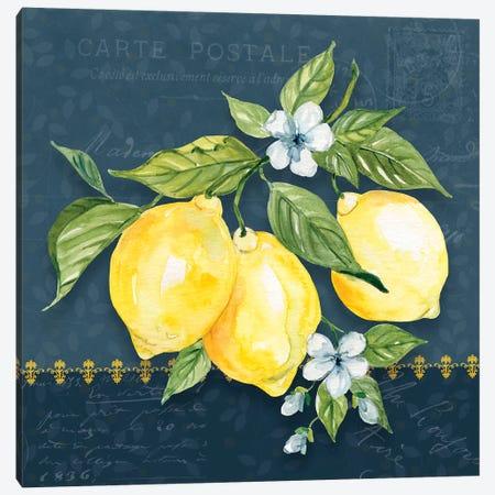 Blue Lemon Squeeze I Canvas Print #CRO1103} by Carol Robinson Canvas Print