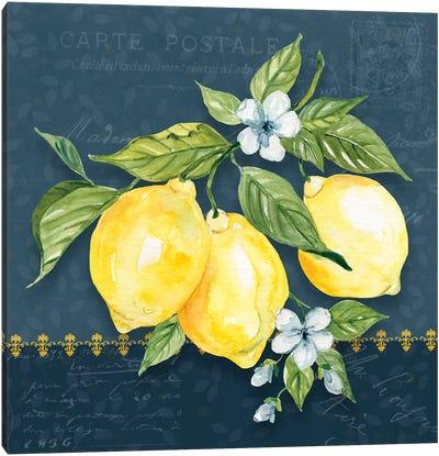 Blue Lemon Squeeze I Canvas Art Print
