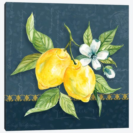 Blue Lemon Squeeze II Canvas Print #CRO1104} by Carol Robinson Canvas Artwork