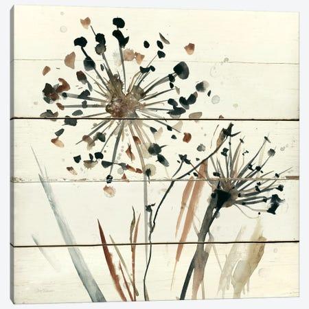 Nature's Lace II Canvas Print #CRO110} by Carol Robinson Canvas Art Print