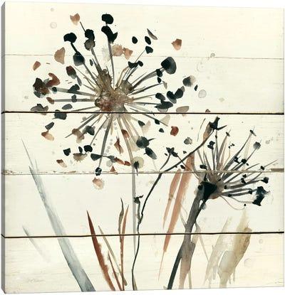 Nature's Lace II Canvas Art Print