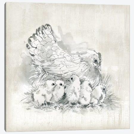 Hen And Chicks Canvas Print #CRO1115} by Carol Robinson Canvas Print