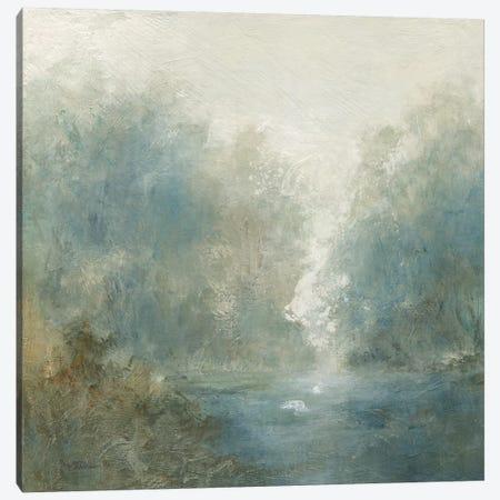 Quiet Mist Canvas Print #CRO1129} by Carol Robinson Canvas Print