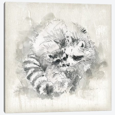 Raccoon Momma And Baby Canvas Print #CRO1130} by Carol Robinson Canvas Wall Art