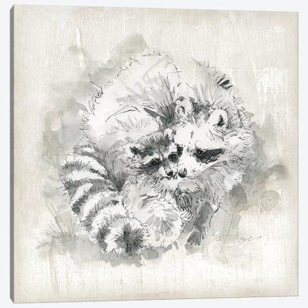 Raccoon Momma And Baby Canvas Print #CRO1130} by Carol Robinson Canvas Wall Art