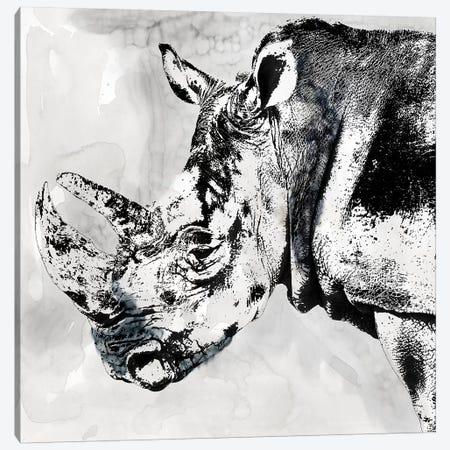 Rhino Wash Canvas Print #CRO1131} by Carol Robinson Canvas Wall Art