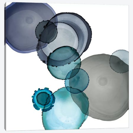 Seaglass I Canvas Print #CRO1132} by Carol Robinson Canvas Artwork