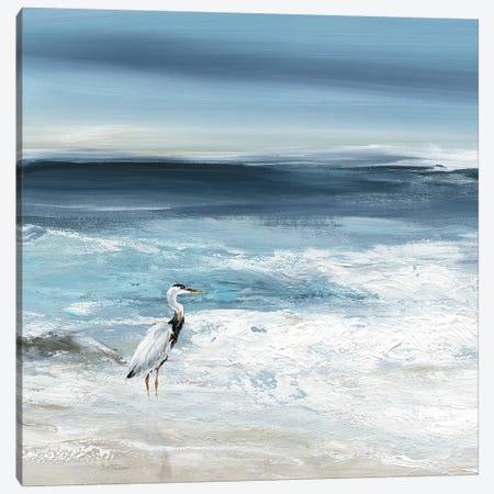 Tidal Fishing I Canvas Print #CRO1140} by Carol Robinson Canvas Print
