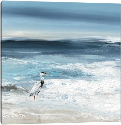Tidal Fishing I Canvas Art Print