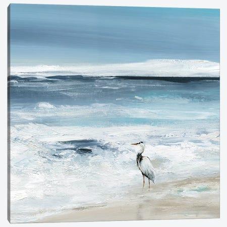 Tidal Fishing II Canvas Print #CRO1141} by Carol Robinson Canvas Print