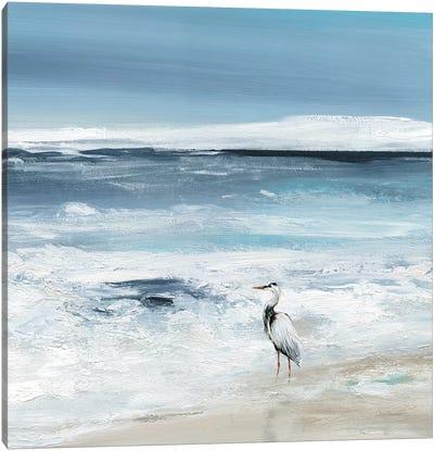 Tidal Fishing II Canvas Art Print