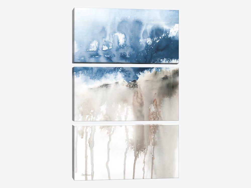 Windy Cliff I by Carol Robinson 3-piece Canvas Artwork